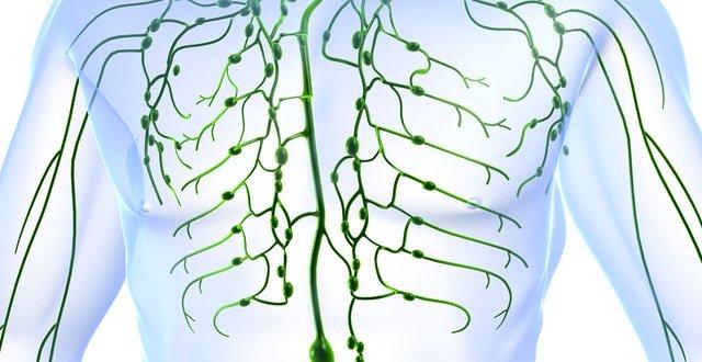 c852de60ff Changing the lymphoedema landscape – Medical Independent