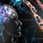 CPD Module- Multiple sclerosis: new and existing therapies